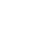 sinnesfein-logo-weiss